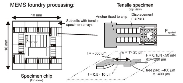 Chip layout and tensile specimen design