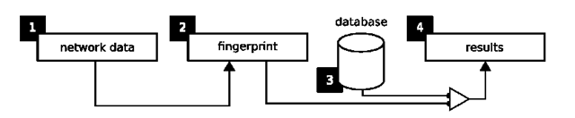 Representation of the OS fingerprinting process