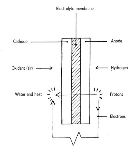 Polymer electrolyte or proton exchange membrane fuel cell.