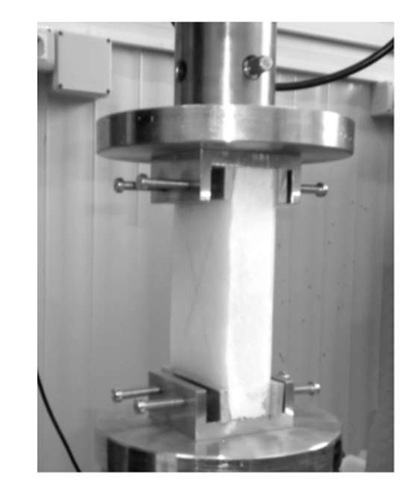 Loading frame utilized for the edgewise compression tests