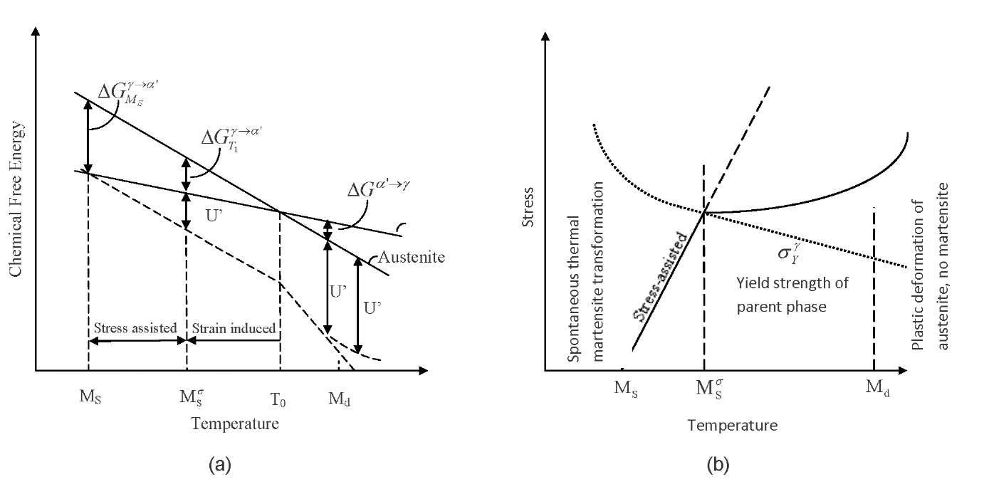 Dynamic thermo mechanical response of austenite containing steels free energy of martensite and austenite a and dependence of the critical stress pooptronica Gallery