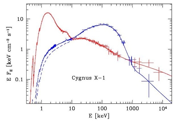 "X- and gamma-ray spectra ofthe black-hole candidate Cyg X-1 in soft (""high"") and hard (""low"") spectral states as measured by COMPTEL (MeV), OSSE (sub-MeV) and BeppoSAX (X-ray) instruments. The spectral fits are obtained within the hybrid thermal/nonthermal Comtonization model."
