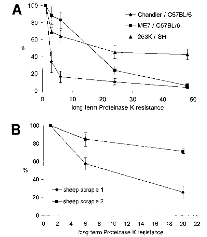 Analysis of the long-term proteinase K (PK) resistance of mouse and hamster adapted scrapie strains (top) and sheep scrapie isolates (bottom). Strains ME7 and Chandler were propagated in C57BL/6 mice, and strain 263K in Syrian hamsters. Sheep PrPSc was isolated from natural infected sheep by scrapie. PrPSc was purified and fibrils were subsequently exposed for prolonged times (1, 3, 6, 24, 48 h [in the case of the strains]) and for 1, 6, 20 h ([in the case of the sheep isolates]) to PK (50 ^g/mL) at 37°C. After SDS-PAGE and immunoblotting protein bands were detected by using the polyclonal antibody Ra5/7 (mice), mAb 3F4 (Syrian hamster), and mAb P4 (sheep). Horseradish peroxidase-conjugated affinity-purified goat antimouse and goat antirabbit immunoglobulin IgG served as detection antibodies. Membranes were developed using a chemiluminescence enhancement kit, and residual PrPSc compounds recorded electronically. Signal intensities after digestion with PK for 1h were defined as 100% for each strain or isolate. Arithmetric means of at least four runs per sample were calculated. Standard error values are indicated.