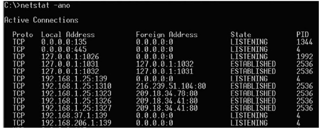 Excerpt from the Output of the netstat -ano Command on Windows XP