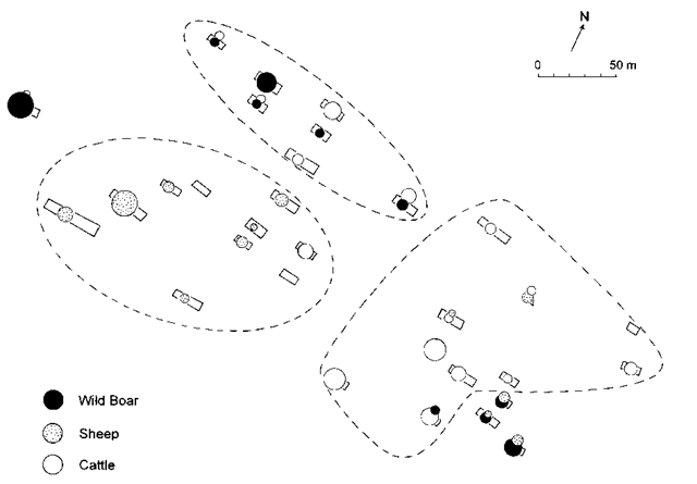 Outline distribution of the structured distribution of dominant species at Cuiry-les-Chaudardes; circle sizes indicate relative abundance.