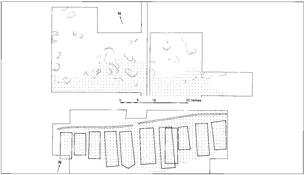 Outline plans of the main features and finds distributions (animal bone and flint) at (top) the Mesolithic site of Schotz 7 and (below) the Neolithic site of Egoilzwil 5,Wauwilermoos, north-west Switzerland.