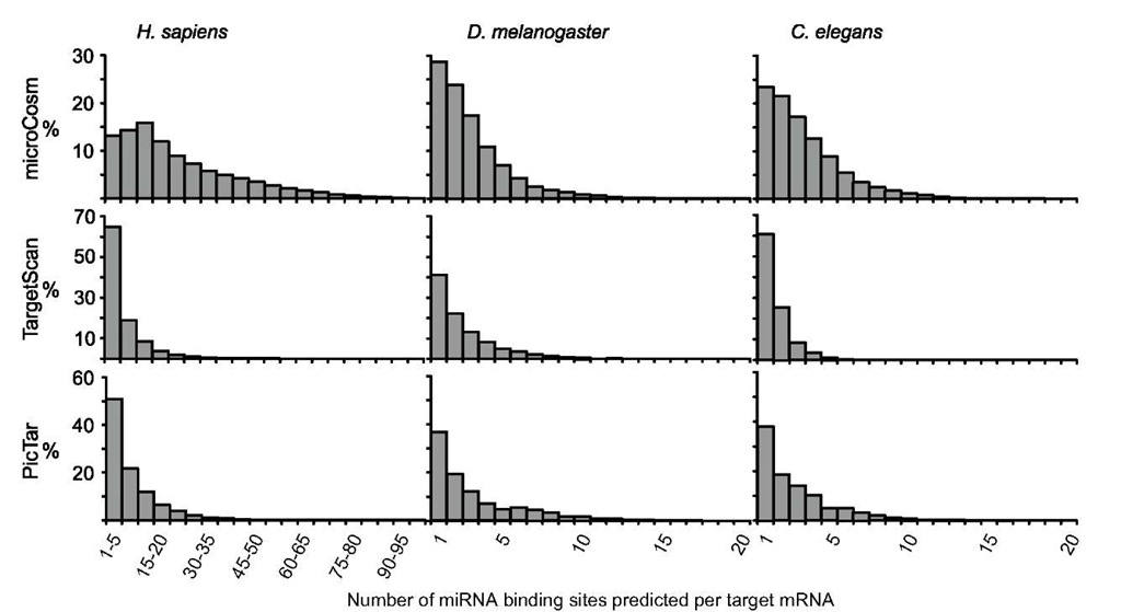Frequency of the number of miRNA-binding sites in the 3' UTR of target mRNAs in Homo sapiens, Drosophila melanogaster, and Caenorhabditis elegans, calculated with the three prediction methods available in miRBase: microCosm, TargetScan, and PicTar.