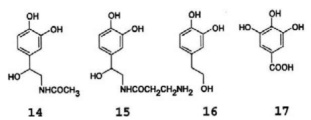Hypothetical sclerotization precursors. (14): W-acetyl-norepinephrine (NANE); (15): W-P-alanyl-norepinephrine (NBANE); (16): 3,4-dihydroxyphenylethanol (DOPET); (17): gallic acid.