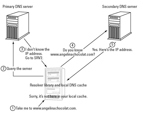 Serving Up DNS (The Domain Name System) (TCP/IP) Part 1