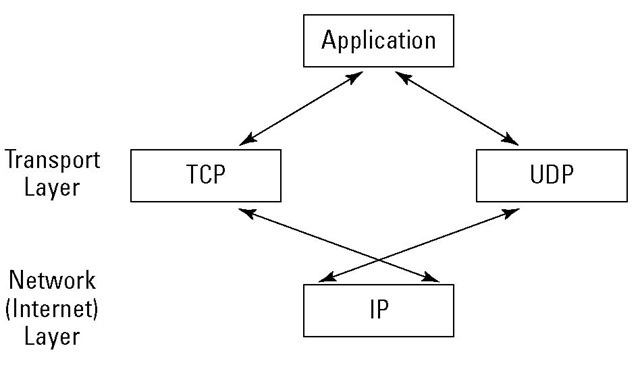 TCP and UDP pass IP packets to and from the applications.