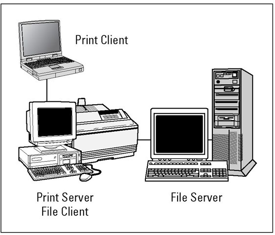 A computer can be a client and a server at the same time.