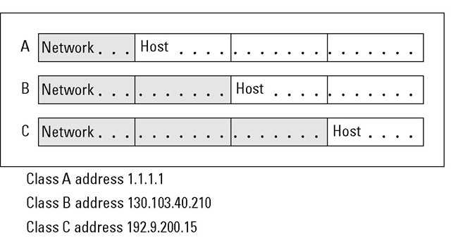As the network size grows, the number of hosts shrinks.