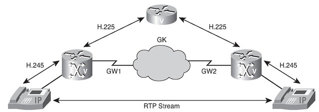 Role of RTP
