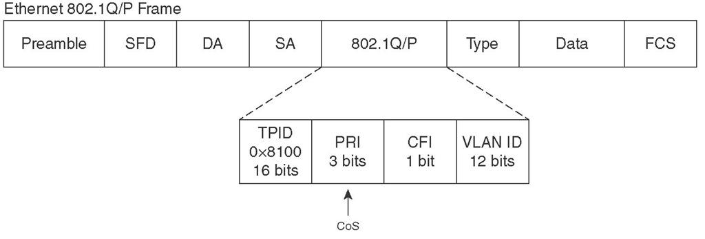 802.1Q/P Field