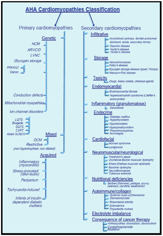 The American Heart Association classification of cardiomyopathies.