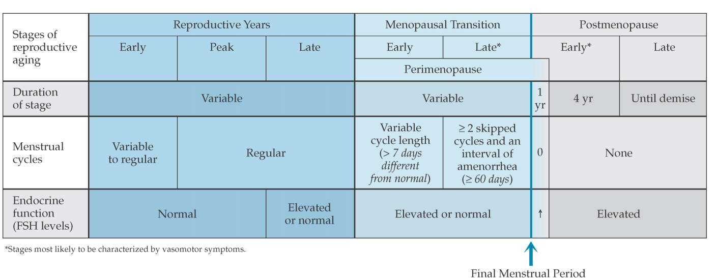 The Stages of Reproductive Aging Workshop (STRAW) reproductive staging  system showing the relationship of