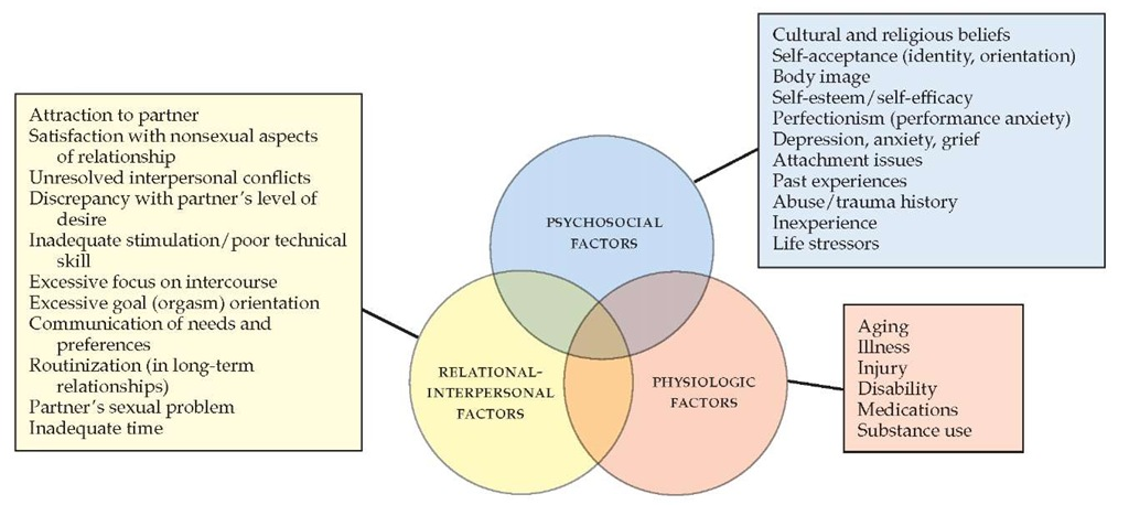 biopsychosocial model of mental health pdf