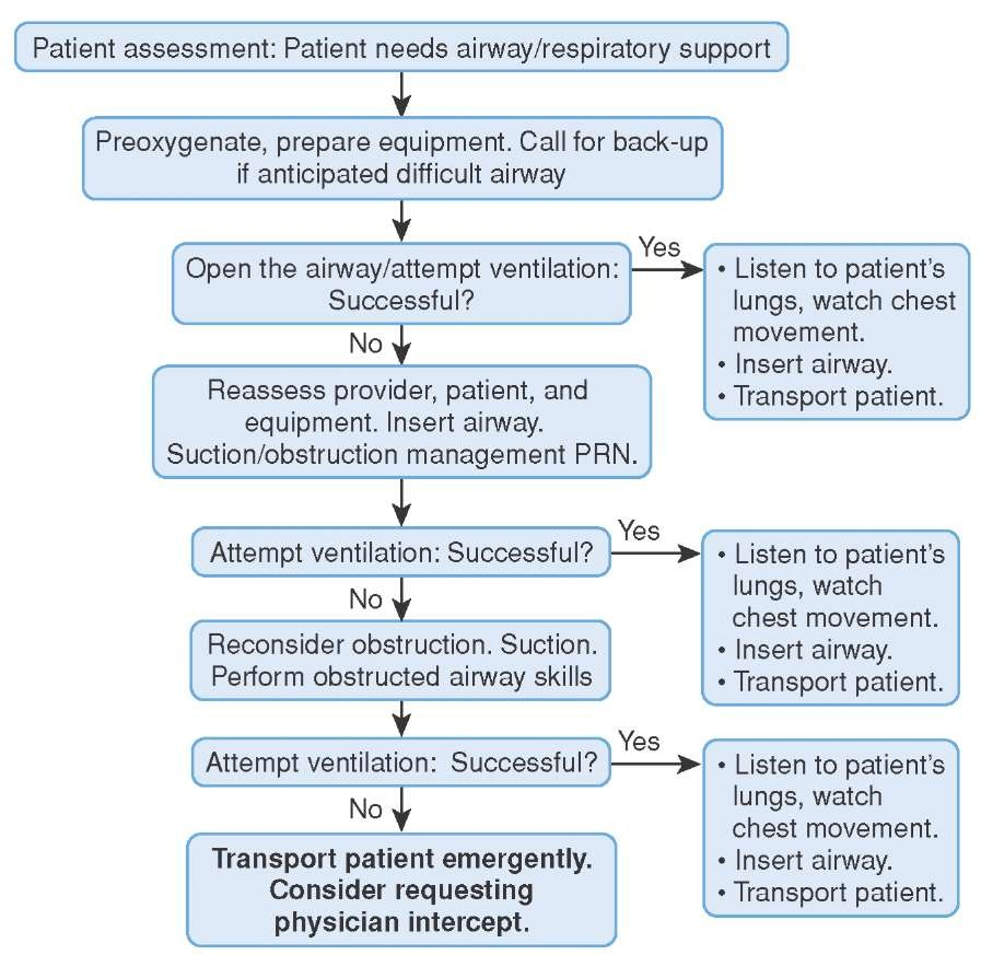 The Algorithmic Approach to Airway Management (Clinical