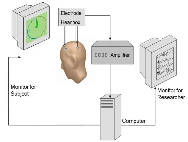 Equipment requested for IEC. Scalp electrodes capture brain oscillations and transmit them to the amplifier. After amplification signals are transmitted to the computer where online calculations (e.g., Fast Fourier Transformation) are performed. Pre-processed data are presented to the subjects either visually (e.g., compass-needle) and/or acoustically (e.g., varying tone pitches). During IEC subjects permanently get realtime feedback of the parameters (e.g., SMR band power) intended to be changed (e.g., by relaxing). Additionally the researcher can supervise the session by a separate monitor.