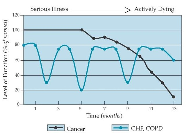 Prognosis is relatively predictable in metastatic cancer; these patients typically have a long period of functional stability, then several months of progressive functional decline and weight loss just before death. In contrast, prognosis can be difficult to predict in diseases such as chronic heart failure (CHF), chronic obstructive pulmonary disease (COPD), and Alzheimer disease; these patients typically experience a lengthy decline in daily function, with periodic bouts of severe symptoms and disability and multiple hospital admissions for exacerbation and for adjustment of therapy. Death may occur during a severe exacerbation, but—especially in CHF—often occurs suddenly and relatively unpredictably from cardiac arrhythmia.