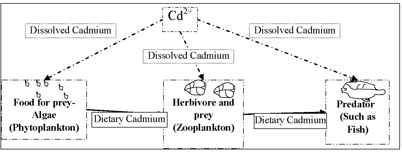 an overview of cadmium Context - cadmium is produced mainly as a by-product of mining, smelting and refining of zinc , lead and copper most of the cadmium produced is used in the production of nickel-cadmium batteries how does cadmium affect human health and the environment.