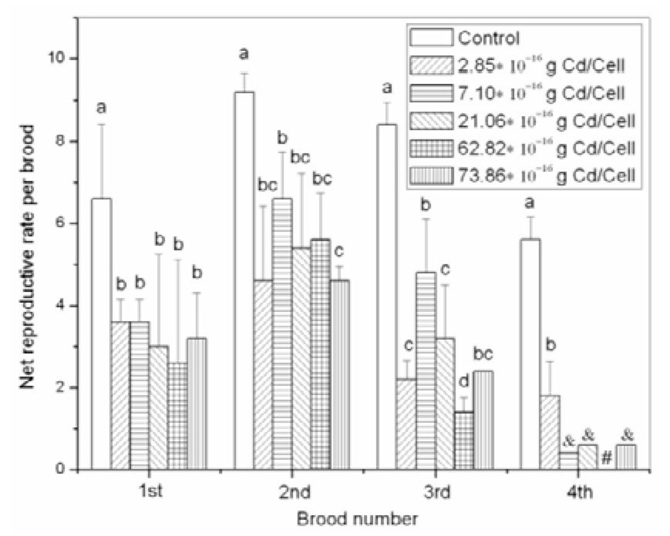 "Net reproductive rate per brood of Moina monogolica in 21-d dietary cadmium experiments after feeding with Chlorella pyrenoidosa exposed for 96 h to a control and five cadmium concentrations. Vertical error bars represent the standard deviations among five replicates. Means with the same letter are not significantly different (Student-Newman-Keuls multiple-range tests, p<0.05). The ""&"" means that only one female produced neonates, so comparisons could not be made because of no standard deviations. The ""#"" means that all exposed organisms died in the fourth brood before day 21."