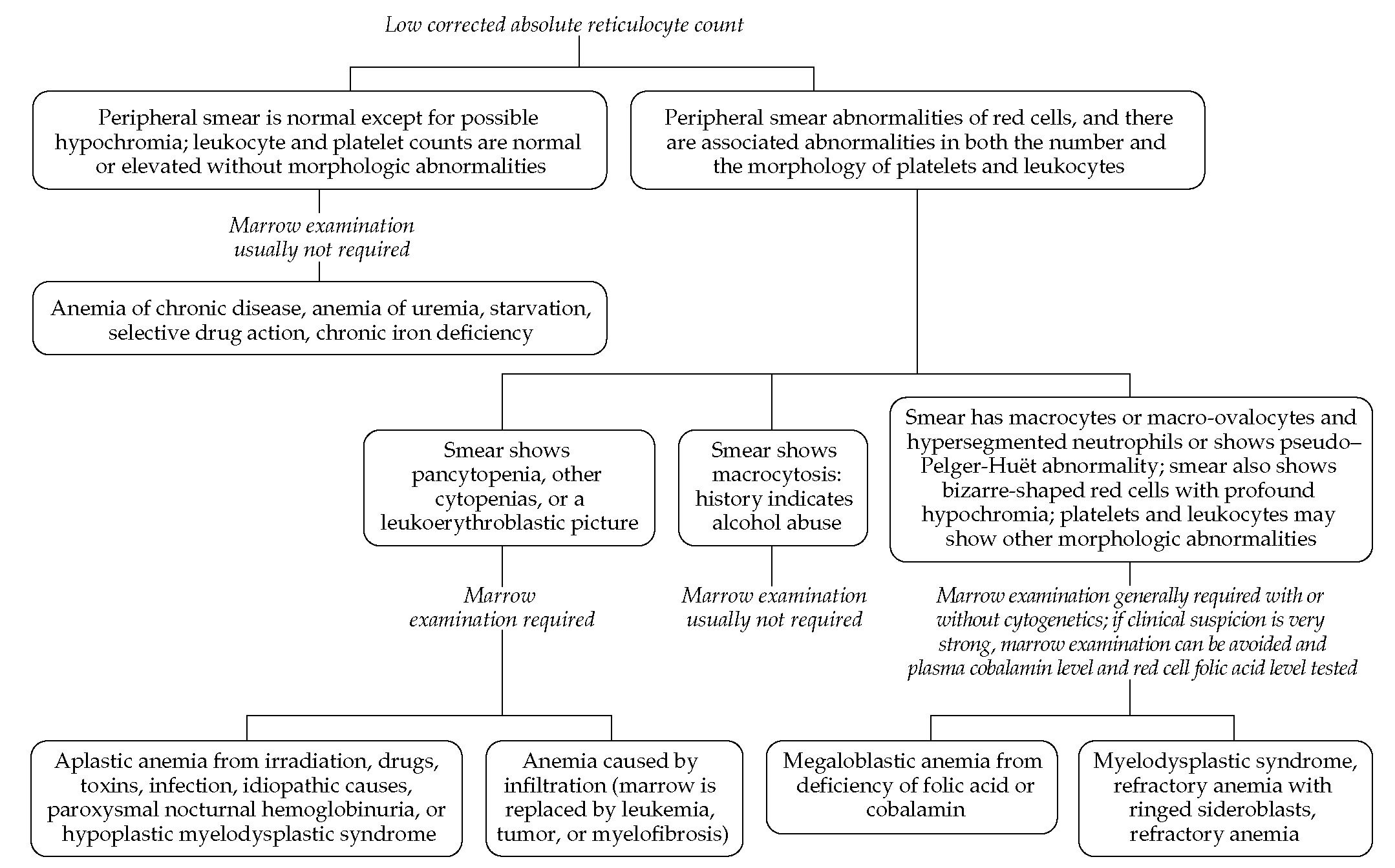 Anemia production defects part 1 flowchart shows steps in the diagnosis of anemia caused by production defects this type of geenschuldenfo Choice Image