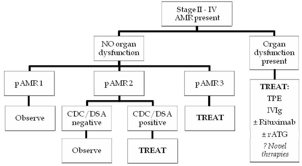 AMR treatment algorithm. CDC, complement dependent cytotoxicity. DSA, donor specific antibody. IVIg, intravenous immunoglobulins. rATG, rabbit anti-thymocyte globulin. TPE, plasmapheresis.