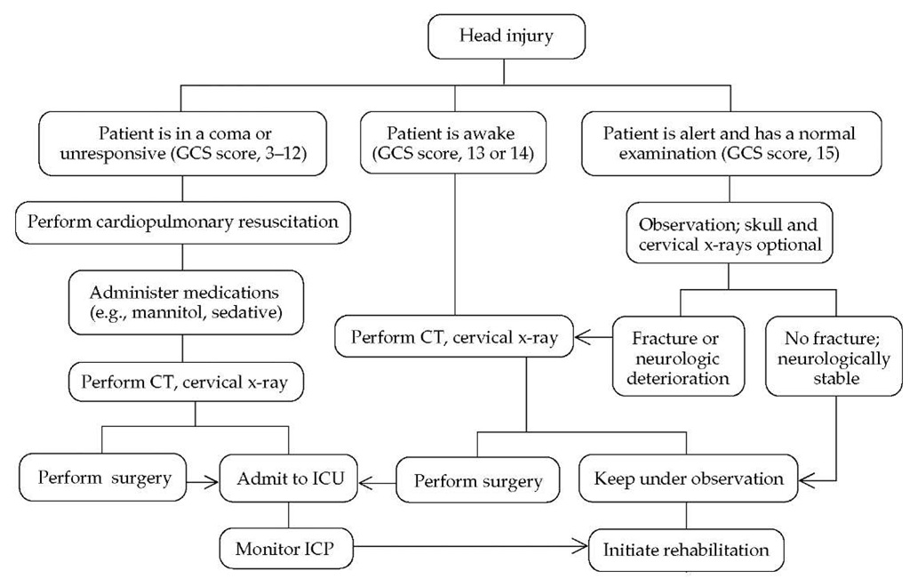 Management algorithm for patients with traumatic brain injury. (GCS—Glasgow Coma Scale; ICP—intracranial pressure)