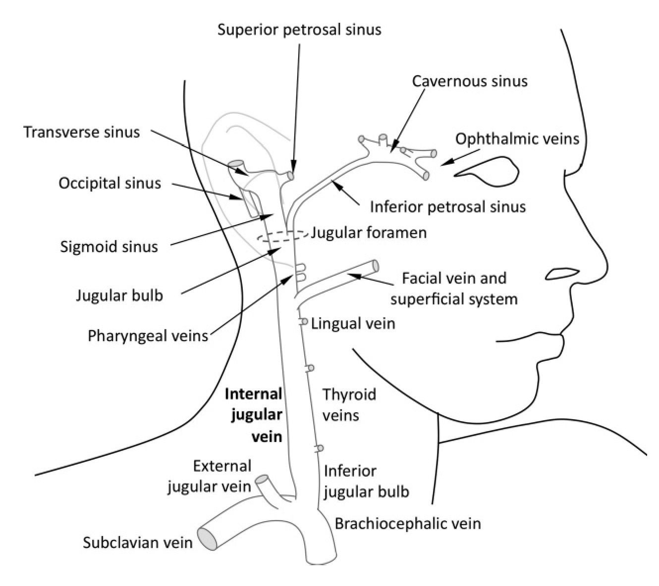 Cerebral oxygenation (Monitoring and imaging) Part 1