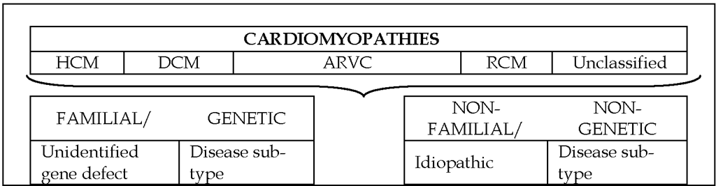 European Society of Cardiology classification of primary cardiomyopathies.