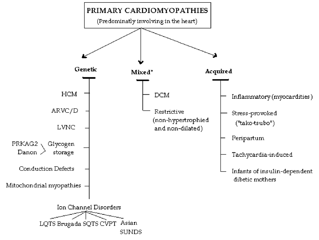 Classification model for Primary cardiomyopathies (disease processes solely or predominantly involves the myocardium). The conditions have been segregated according to their genetic or nongenetic etiologies. *Predominantly nongenetic; familial disease with a genetic origin has been reported in a minority of cases. ARVC/D indicates arrhythmogenic right ventricular cardiomyopathy/dysplasia; CPVT, catecholaminergic polymorphic ventricular tachycardia; DCM, dilated cardiomyopathy; HCM, hypertrophic cardiomyopathy; LQTS, long QT syndrome; LVNC, left ventricular noncompaction; SQTS, short QT syndrome; and SUNDS, sudden unexplained nocturnal death syndrome.