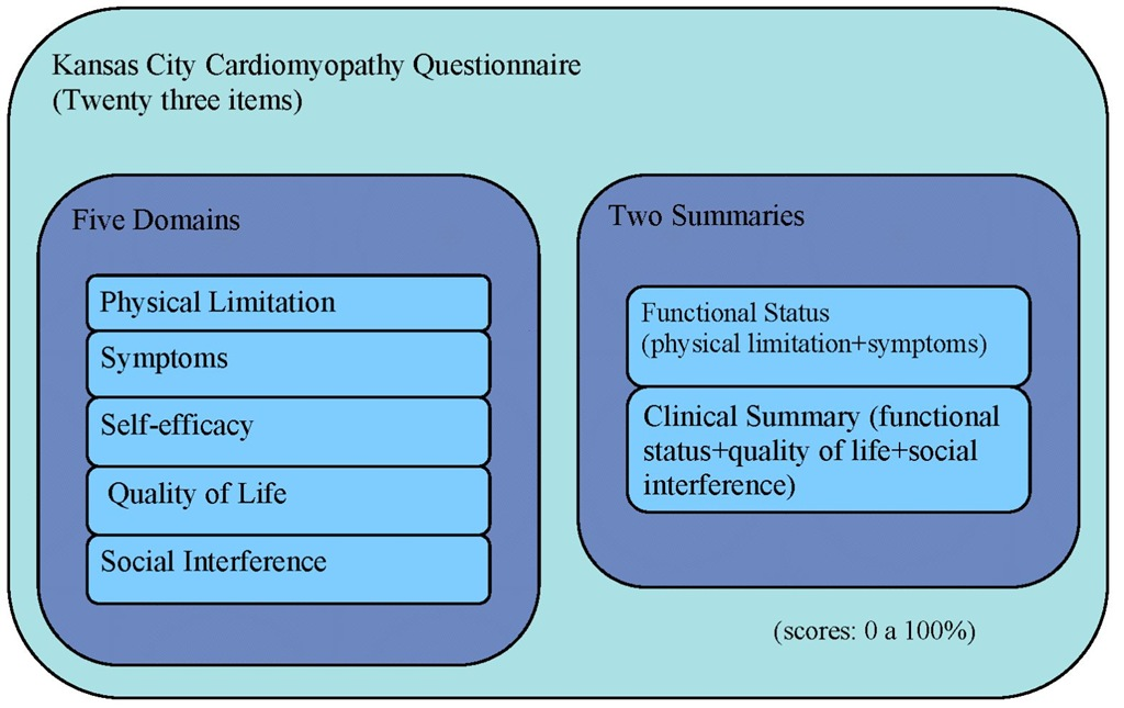 Domains and Summaries of the Kansas City Cardiomyopathy Questionnaire