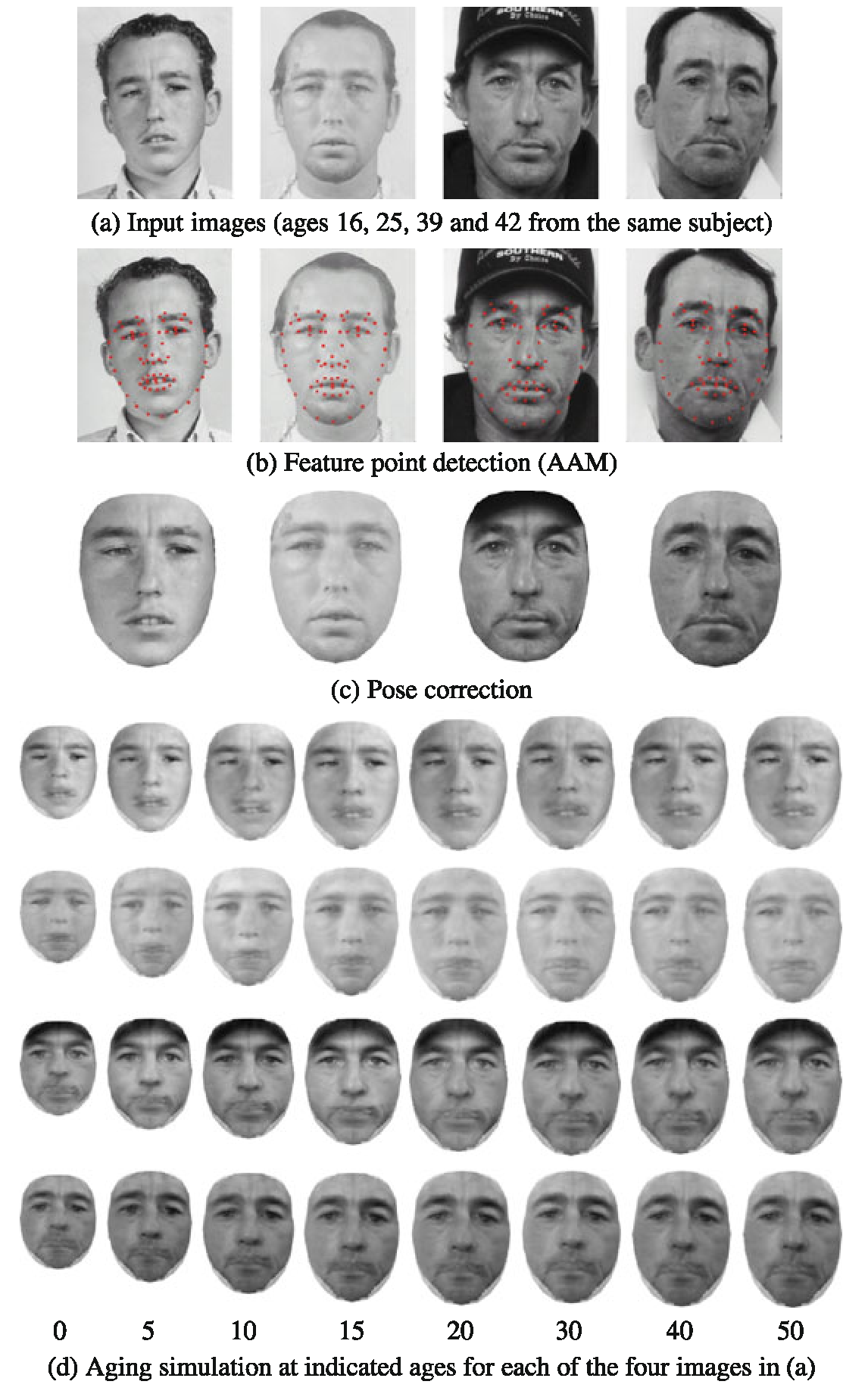 Face Aging Modeling (Face Image Modeling and Representation
