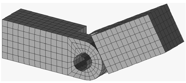 Mesh of a hinge joint.