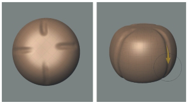Use the Bulge Tool to Mark the Sections of the Pepper. However, In This Case, You Will Invert the Bulge Tool by Pressing Ctrl While Sculpting to Sculpt Indentions.