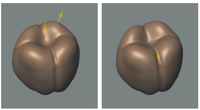 Use a Combination of the Grab and Bulge Tools to Shape the Bottom of the Sphere. By This Point, You Should Be Getting a Feel of How the Sculpting Tools Work.