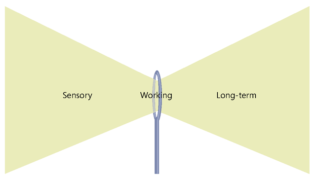 The limited capacity of working memory to process new information creates a narrow passage—much like the eye of a needle—that stands between the information you present sensory memory and the information that is integrated into long-term memory.