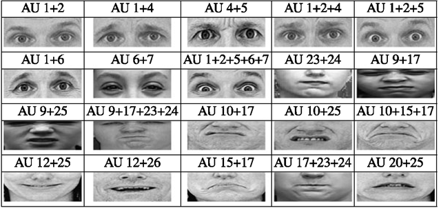 Analyzing facial expressions 2