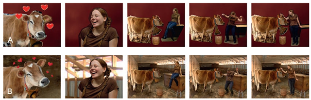 Images of a photographic storyboard. a is a simple cut and paste photographic storyboard.