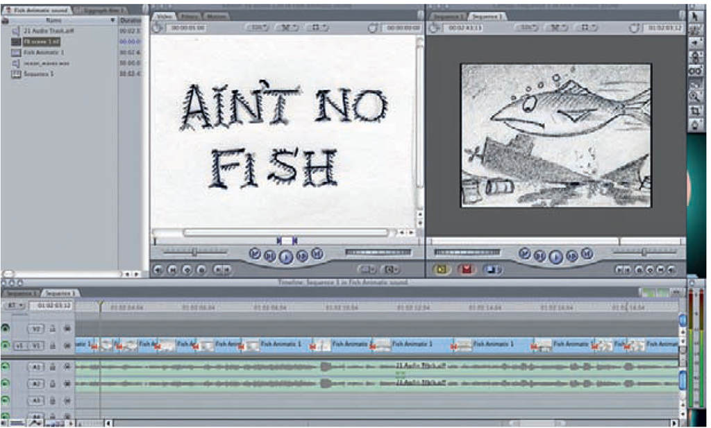 Animatic on a timeline in Final Cut Pro,