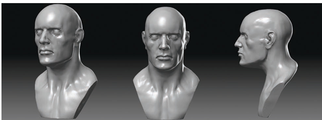 The final head with trimmed shoulders