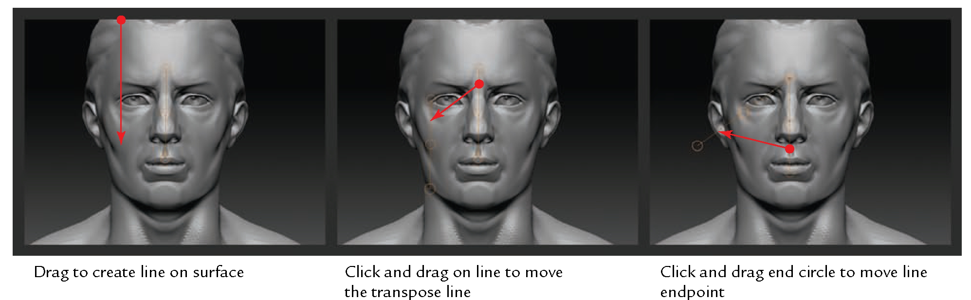 Using the ZBrush Tools (Sculpting, from Traditional to Digital