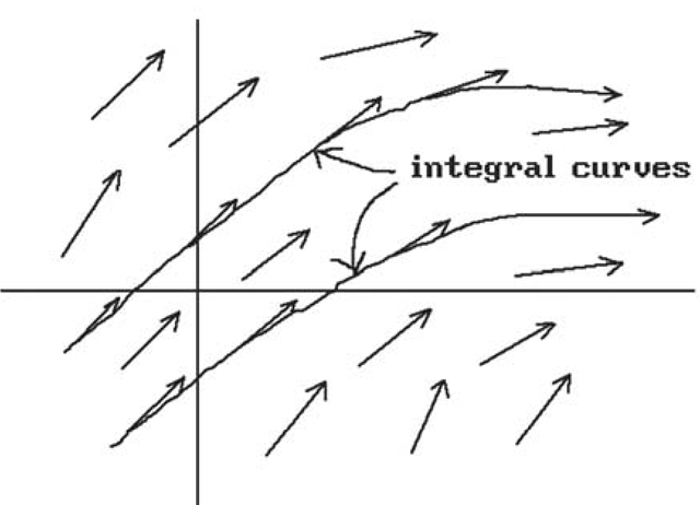 Integral curves of a vector field.