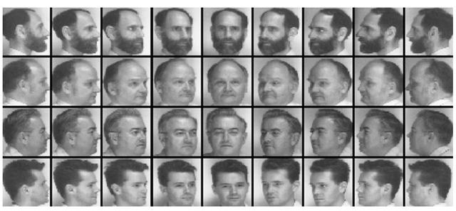 Multiview face image data used in the experiments described in Sect. 2.6.1.