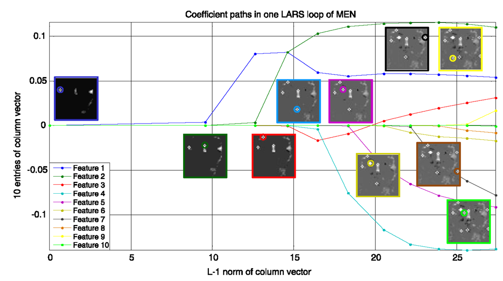 Coefficient paths of 10 features in one column vector
