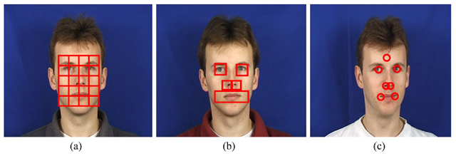 Facial feature computation from a a regular grid of fixed size regions, b irregular variable size regions (feature-driven) and c around central feature locations
