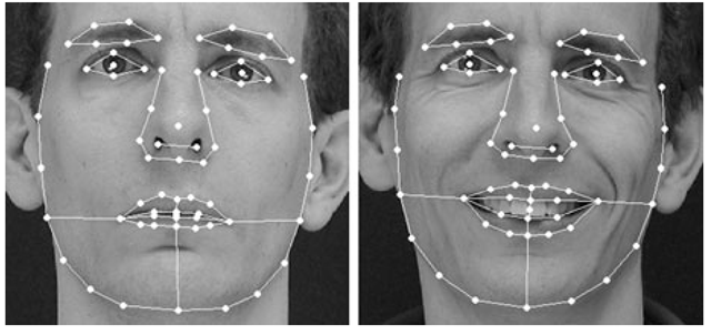 Face Alignment Models (Face Image Modeling and ...