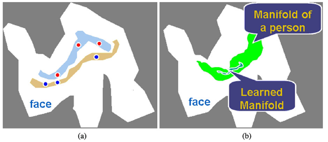 Challenges in face recognition from subspace viewpoint. a Euclidean distance is unable to differentiate between individuals. When using Euclidean distance, an inter-person distance can be smaller than an intra-person distance. b The learned manifold or classifier is unable to characterize (i.e., generalize) unseen images of the same face