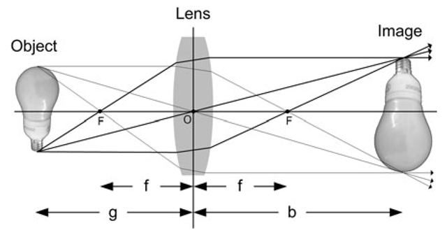 The figure shows how the rays from an object, here a light bulb, are focused via the lens. The real light bulb is to the left and the image formed by the lens is to the right